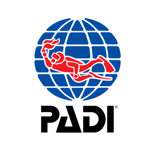 FiDive PADI Freediving
